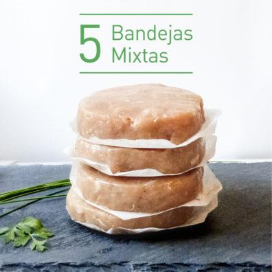 Pack Burger FIT 5 bandejas mixtas (envío incluído)